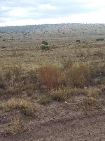 31 pinon springs Road, Magdalena, NM 87825
