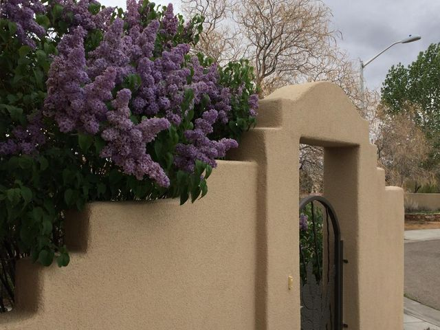 8800 Henriette Wyeth Drive NE, Albuquerque, NM 87122