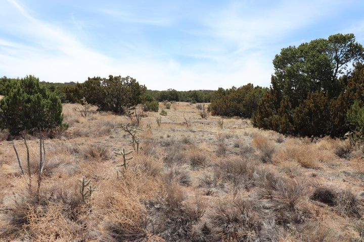 21 Camino Real, Sandia Park, NM 87047