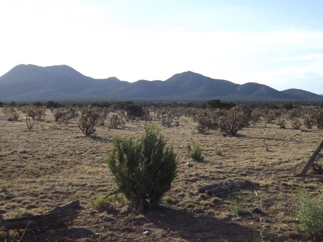 1170 STATE ROAD 344, Stanley, NM 87056