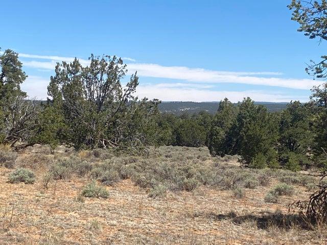 Lot 103 Ranch Dr - Pine Meadows Unit 2, Ramah, NM 87321