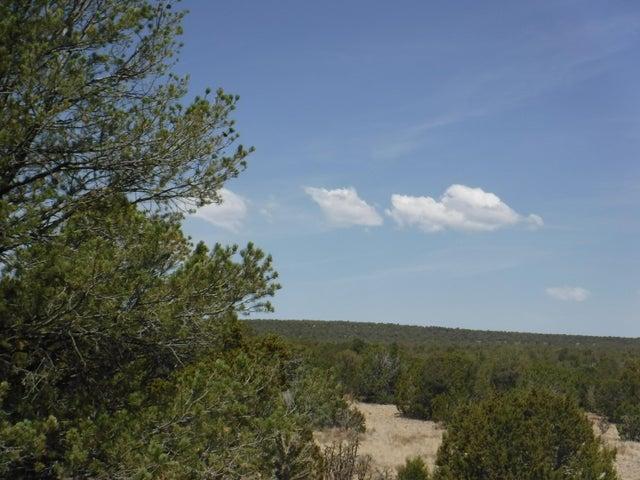 0 Dixon Road, Edgewood, NM 87015