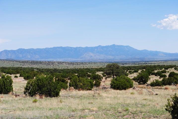 182 Camp Lane, Magdalena, NM 87825