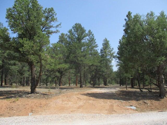 Lot 41 W Elk Drive, Ramah, NM 87321