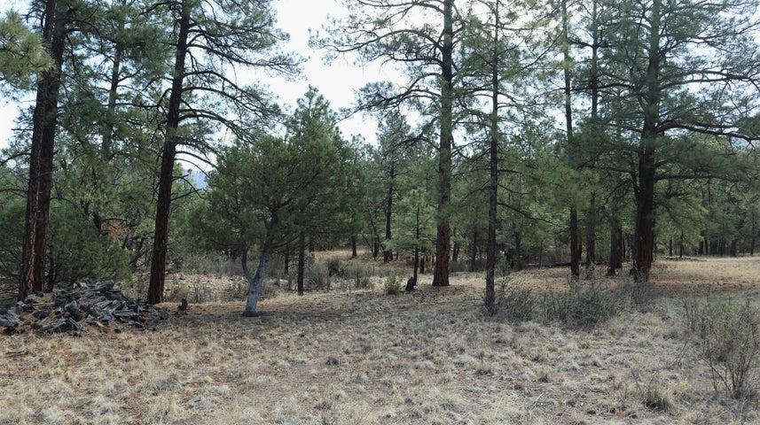 316 Hop Canyon Road, Magdalena, NM 87825