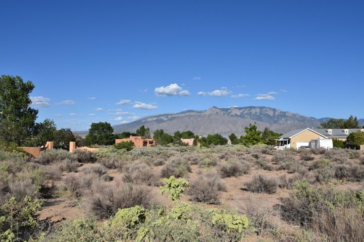 165 Anya Road, Corrales, NM 87048