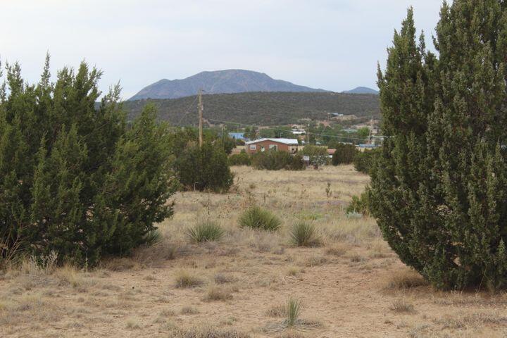 877 COUNTY LINE Road, Edgewood, NM 87015