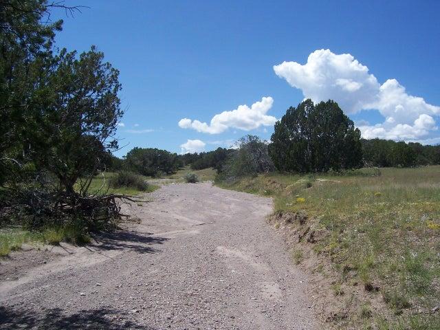 51 Camino del Sueno, Magdalena, NM 87825