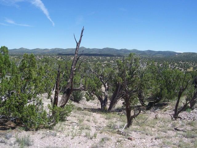 52 Camino del Sueno, Magdalena, NM 87825