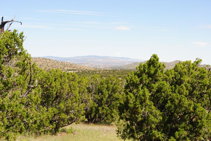 47 Camino del Sueno, Magdalena, NM 87825