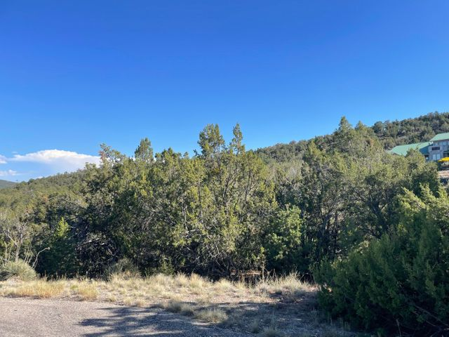 55 CANYON RIDGE Drive, Sandia Park, NM 87047