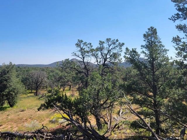 39 Elk Trail, Pie Town, NM 87827