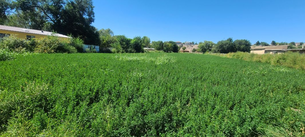 FOOTHILL Drive SW, Albuquerque, NM 87105
