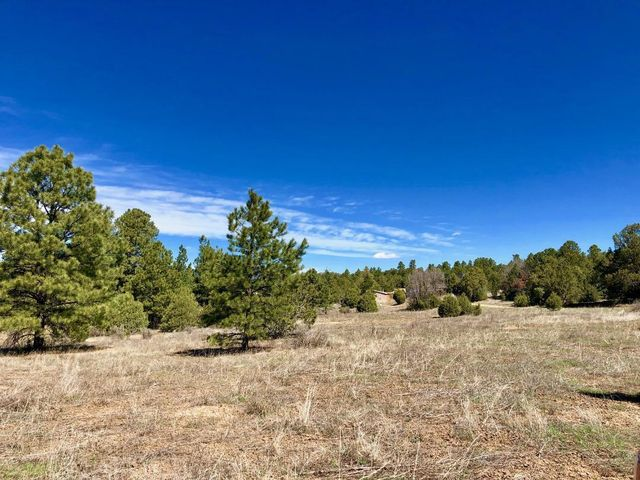 Homes for Sale in Edgewood New Mexico ABQ Real Estate   The Kniffin Team