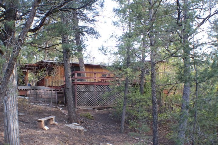You know you're pining for a cabin in the pines!! This one may be just the ticket!!!! Nestled in the beautiful mesa cliffs just above the Jemez River...it is ready for you, your family and friends. Nicely updated with 2-3 BIG bedrooms and 3 baths on a sweet corner lot! Super CUTE kitchen is part of the original travel trailer that this family started with for this special getaway place. 2 big decks for hanging out those long summer days, taking in those FAB views and cool mountain breeze. Two of the bedrooms have private baths and the 3rd could easily be work space or office. Large covered wood storage shed. Large detached garage with workshop and storage space. All on TWO LOTS!! Owner will carry with substantial down. City water and County maintained road