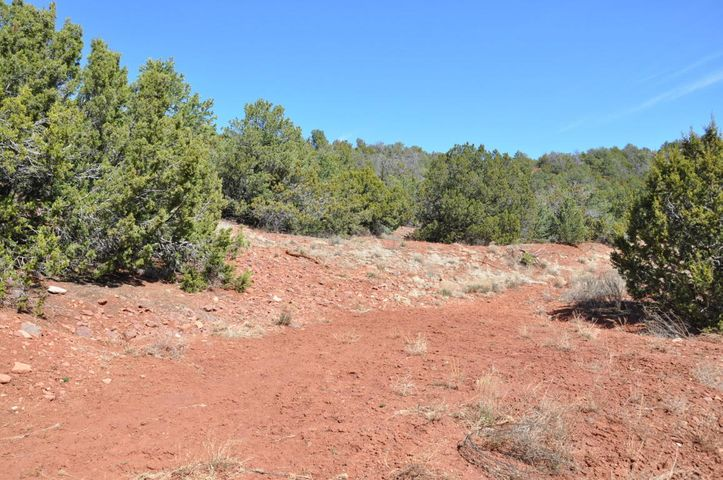 Looking for privacy, but easy access to the commodities of town? Stop what you're doing and check this out! This lot is ready to be the host for your dream home! It's just minutes from I-40. It offers privacy and seclusion but the convenience that you're looking for! This lot is over 4 acres and has gorgeous valley views that will melt the stress away! Inquire and see today!
