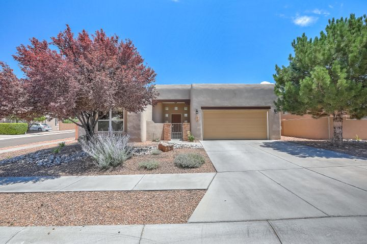 Wonderful 3 bedroom home in the desirable neighborhood of Desert Ridge Trails! Terrific 1 story floor plan including kitchen with stainless steel appliances, plenty of cabinet and counter space, pantry, and breakfast nook; formal dining; great room with Kiva gas log fire place; large master bedroom with its own access to backyard and beautiful master bath that includes a walk-in closet, double sinks, harden tub, and separate shower; spacious secondary bedrooms with Jack and Jill bathroom; gorgeous landscaped backyard perfect for entertaining or enjoying the summer mornings/evenings. New Roof (May 2019) with transferrable warranty. Great location near shopping, restaurants, schools, and Desert Ridge Trails Park.