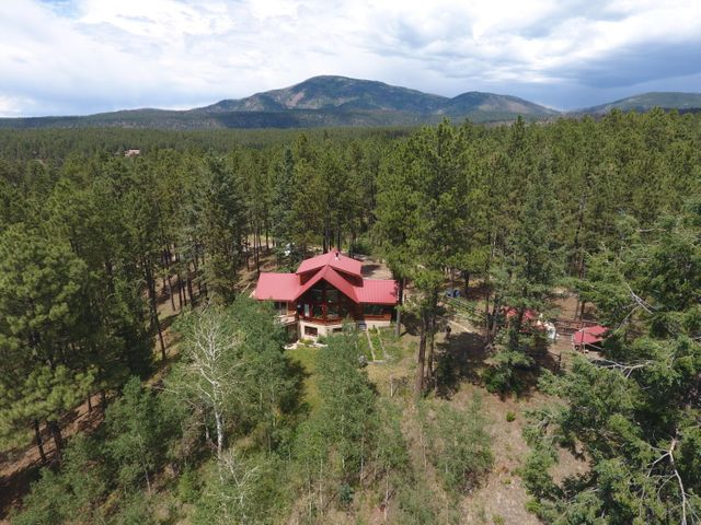 This incredible mountain home will have most everything on your MUST HAVE List! Spacious main level with lovely open Living/Dining/Kitchen, check. Soaring ceilings with windows from the floor up for taking in the amazing surroundings, check. Big Trex Deck for entertaining, relaxing, or just enjoying your 4.5 acres (2 separate lots!) of gardens, wildflowers, meadow, wildlife and whispering aspen trees, check. Generous Master Suite loft with 3/4 bath, check. Lower level guest room with lovely big 3/4 bath & sliders to the lower level deck, check.  Office space, check. Workshop, check. Outbuildings, check. 30 Minute commute to Los Alamos, YES! Easy bike or walk to National Forest, YES! This beauty... lovingly built & lovingly maintained by the same owner since!! Come on up and bring that list
