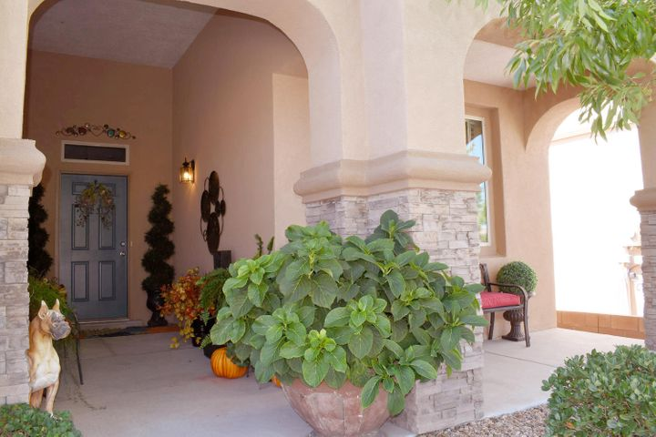 Beautiful DR Horton with a lot of upgrades.Open floor plan with lots of light.  Open gourmet kitchen with SS appliances, granite countertops, 18'' tile-lots of counter space and storage with a pantry. Breakfast nook looks out the the backyard-a real showstopper in the summer and a tranquil place to relax, yet low maintenance.  Spacious master suite with large closet for storage. New carpet in the main living area, upgraded light fixtures throughout.  Absolutely immaculate and looks brand new. This house stands out and won't last long!