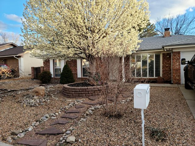 This is a must see single level home in NE Albuquerque.  Pride in ownership shows with all details.  Well cared for and ready for a new owner.  The large master suite has access to spacious backyard.  There is plenty of space and storage throughout, schedule a showing today.