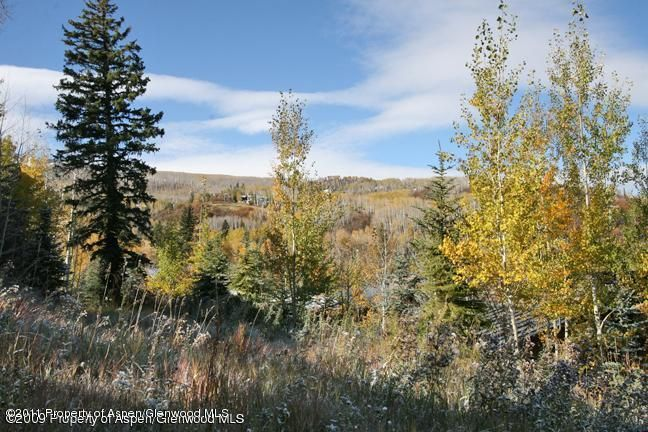 461 Pines Crest Drive Snowmass Village, Co 81615 - MLS #: 120205