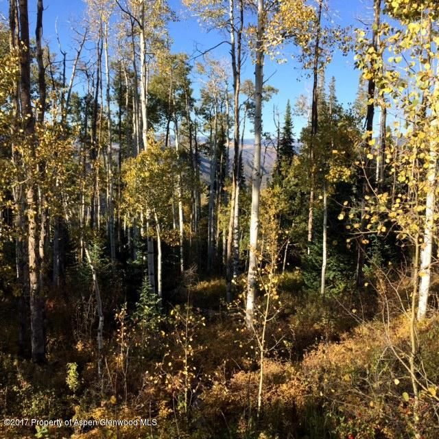1951 Faraway Road Snowmass Village, Co 81615 - MLS #: 150043