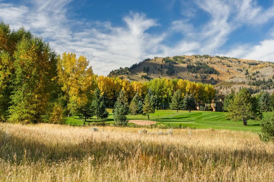 1483 Sierra Vista Drive Aspen, Co 81611 - MLS #: 150032