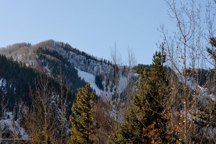 101 Dale Avenue, Aspen, CO 81611