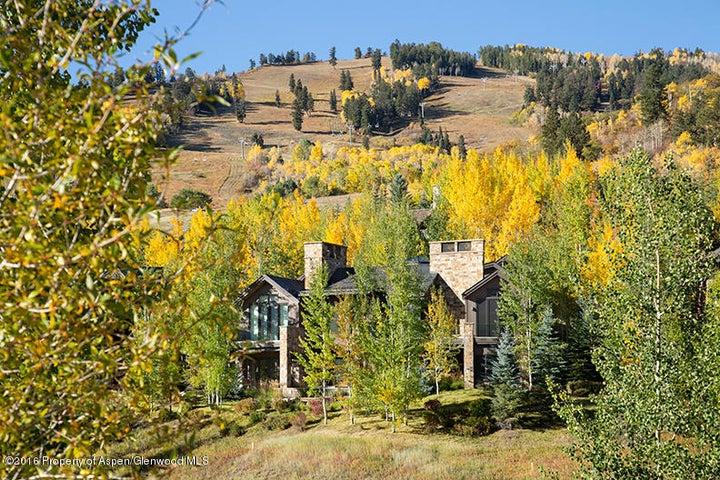 31 N Willow Court, Aspen, CO 81611