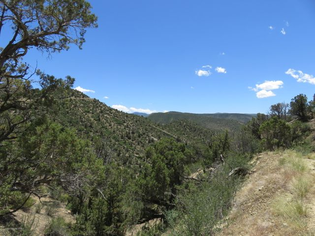TBD Alkali Creek, New Castle, CO 81647