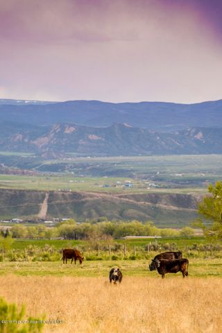 TBD County Road 237, Tract 7, Silt, CO 81652