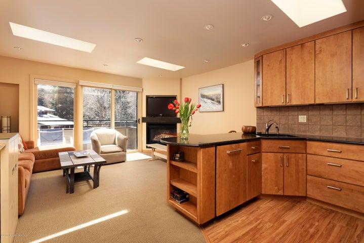835 E Durant Avenue, 3, Aspen, CO 81611