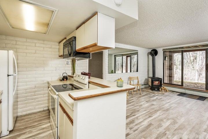 414 Vine Street, Aspen, CO 81611
