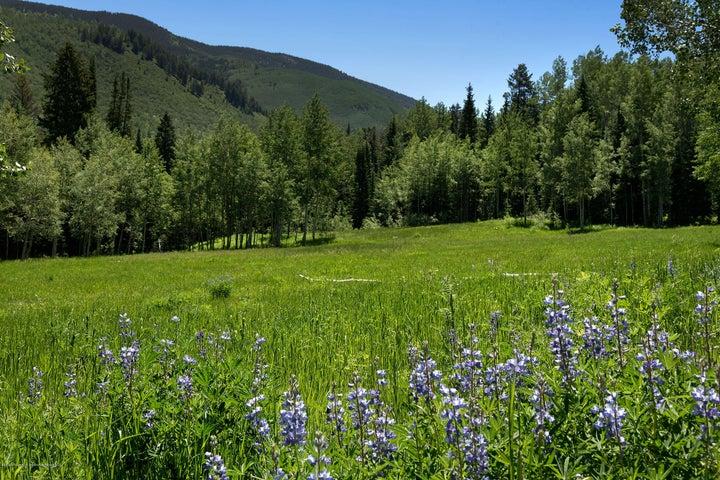 tbd Conundrum Creek Road, Aspen, CO 81611