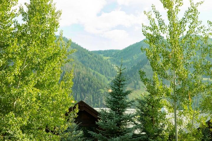 1031 Vine Street, Aspen, CO 81611