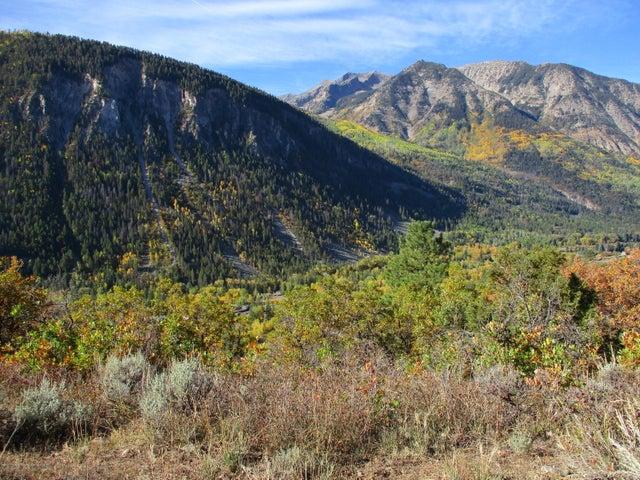 TBD Serpentine Trail, Marble, CO 81623