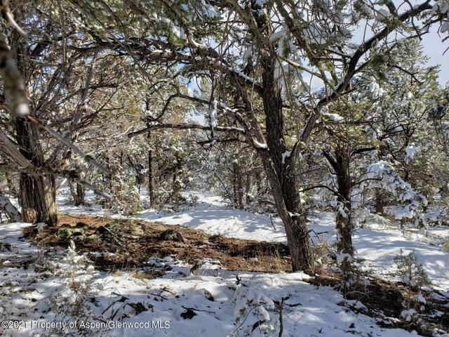 3221 Elk Springs Drive, Glenwood Springs, CO 81601