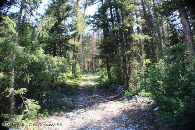 TBD Jasey Trail, Marble, CO 81623