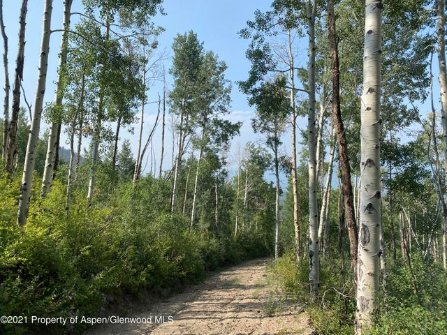 TBD Ragged Mountain Reserve Road, Marble, CO 81623
