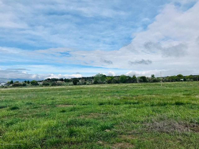 TBD County Road 237 42+/- acres
