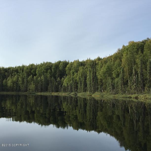 25063 Crystal Lake, Willow
