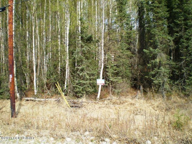 10890 N Seclusion Shores Drive, Willow, AK 99688