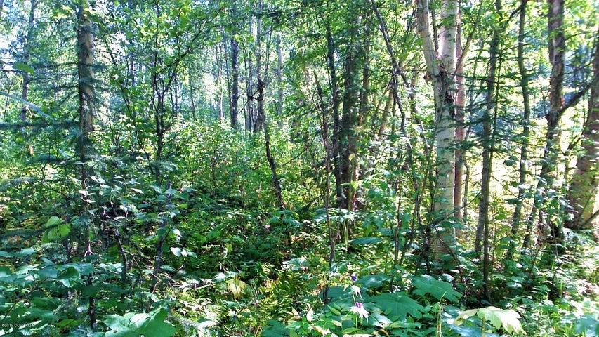 10854 E Susitna River Road, Trapper Creek, AK 99683