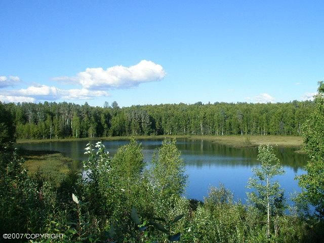 MP 100 Parks Highway, Talkeetna, AK 99676