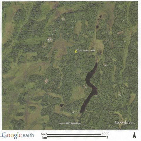 13823 S Kimura Loop, Trapper Creek, AK 99683