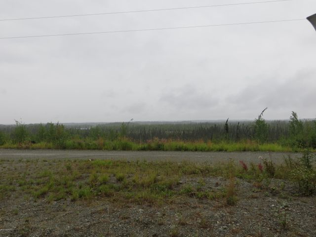 664 S Ashley Road, Big Lake, AK 99652