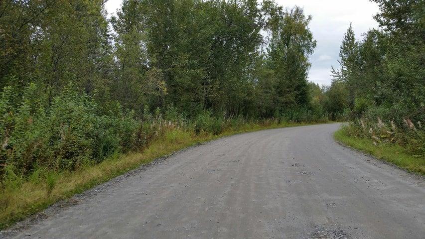 23414 S Vintage Drive, Trapper Creek, AK 99683