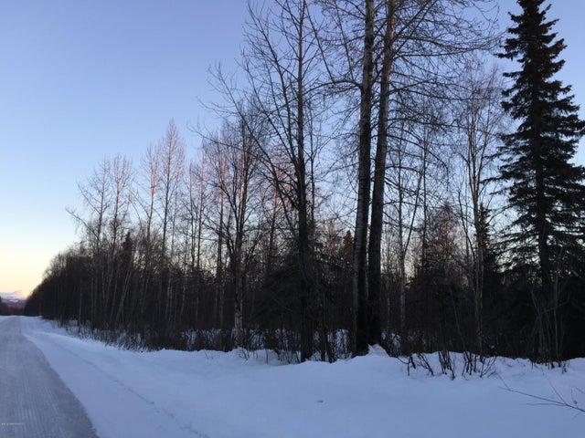 10488 E Susitna River Road, Trapper Creek, AK 99683