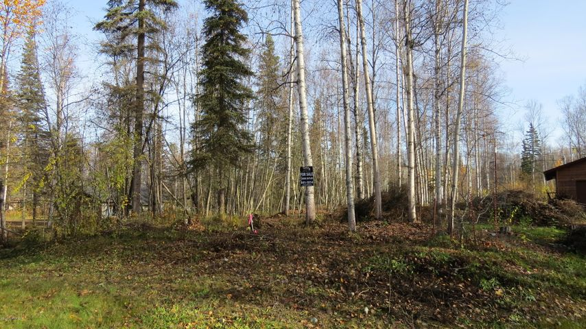 3721 S Musk Ox Street, Big Lake, AK 99652