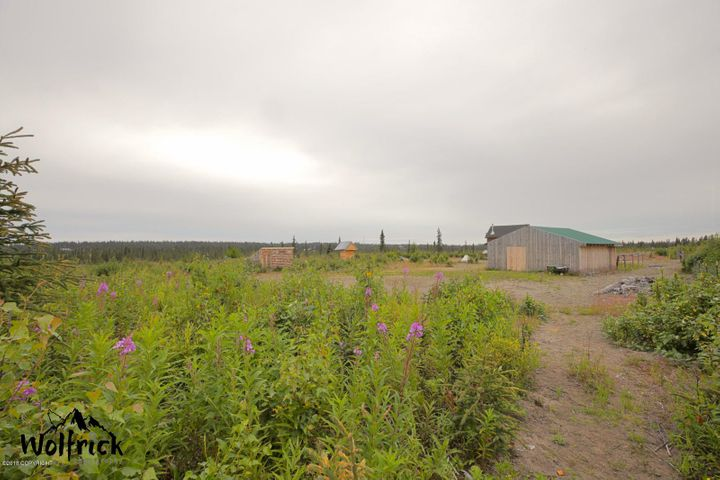 26991 Rowen Street, Anchor Point, AK 99556